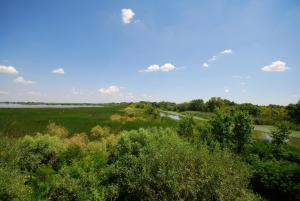 3c809d0ba3 Javul az árvízi biztonság a Közép-Tisza térségében